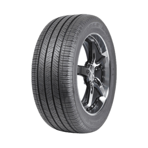 Goodyear Eagle LS/LS2